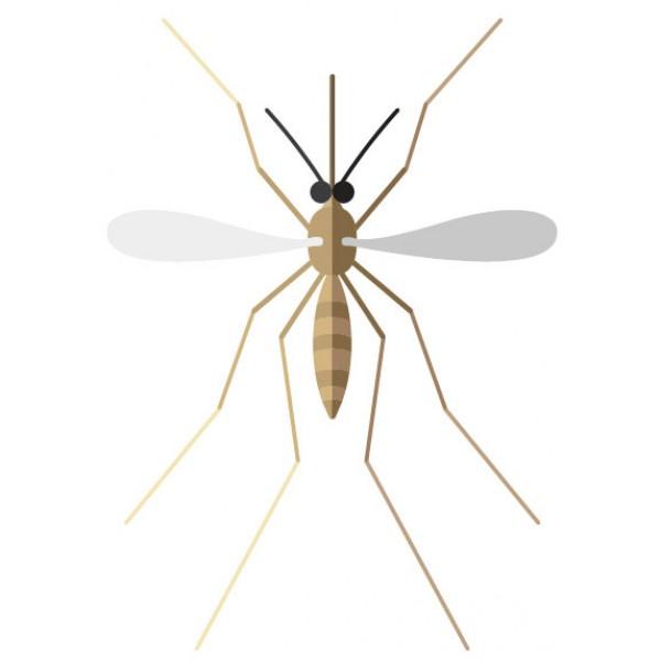 Produtos anti mosquitos