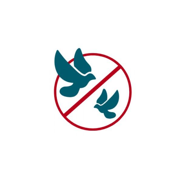 Controle do Pássaro