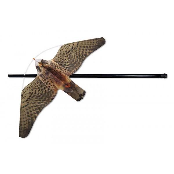 Espantalho de Eolo Falcon