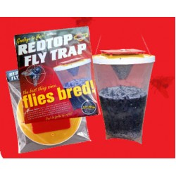 Armadilha de redTop apanha moscas